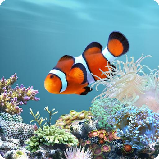 Anipet marine aquarium live wallpaper for Live fish aquarium wallpaper