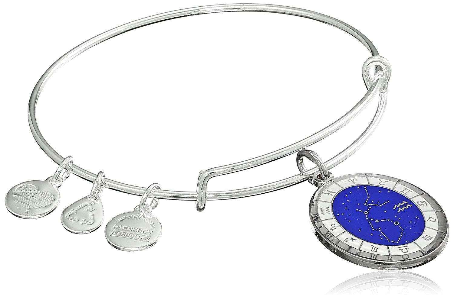 Alex and Ani Constellation Bangle Bracelet