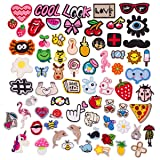 Butie.Patches 70PCS Assorted Styles Embroidered Sew On/Iron On Patch Applique Clothes Dress Plant Hat Jeans Sewing Flowers Applique DIY Accessory (70PCS-RF-45) (Color: 70pcs-rf-45)