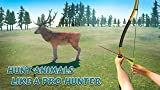 Bow and Arrow Hunting Animals 3D
