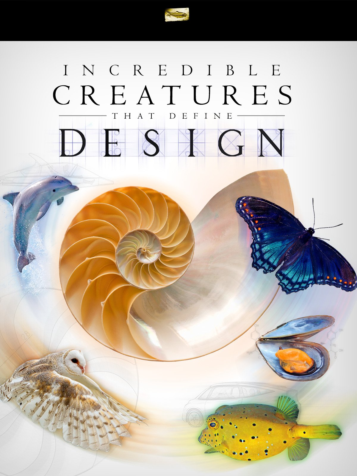 Incredible Creatures That Define Design on Amazon Prime Video UK