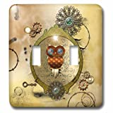 3dRose lsp_243076_2 Steampunk cute owl on a frame with clocks and gears - Double Toggle Switch