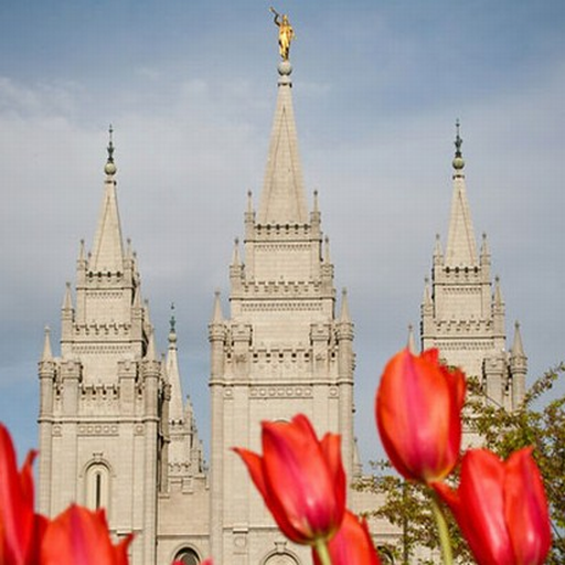 LDS Eye Candy