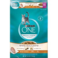 Purina ONE Tender Selects Blend With Real Chicken Dry Cat Food