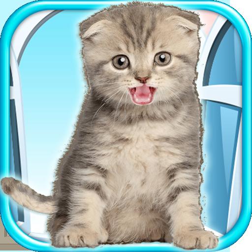talking-kitten-play-time-fun-games-free
