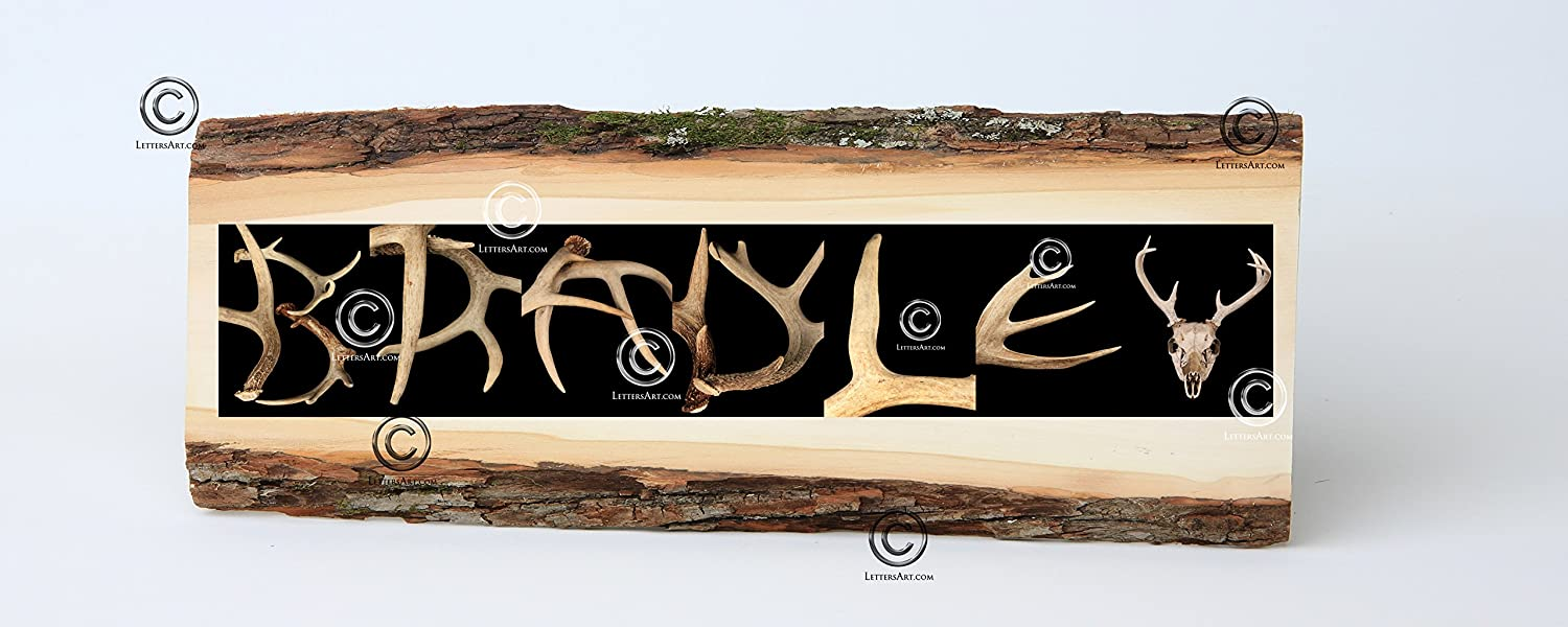 Amazon.com - Antler Alphabet