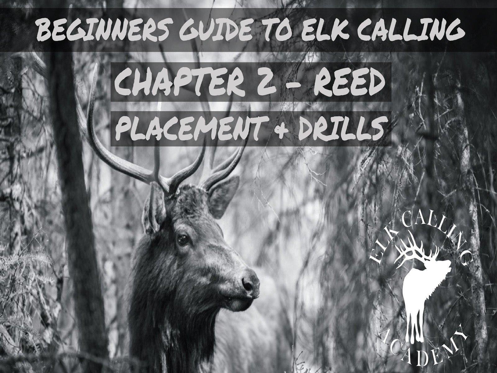 Beginners Guide to Elk Calling - Season 2