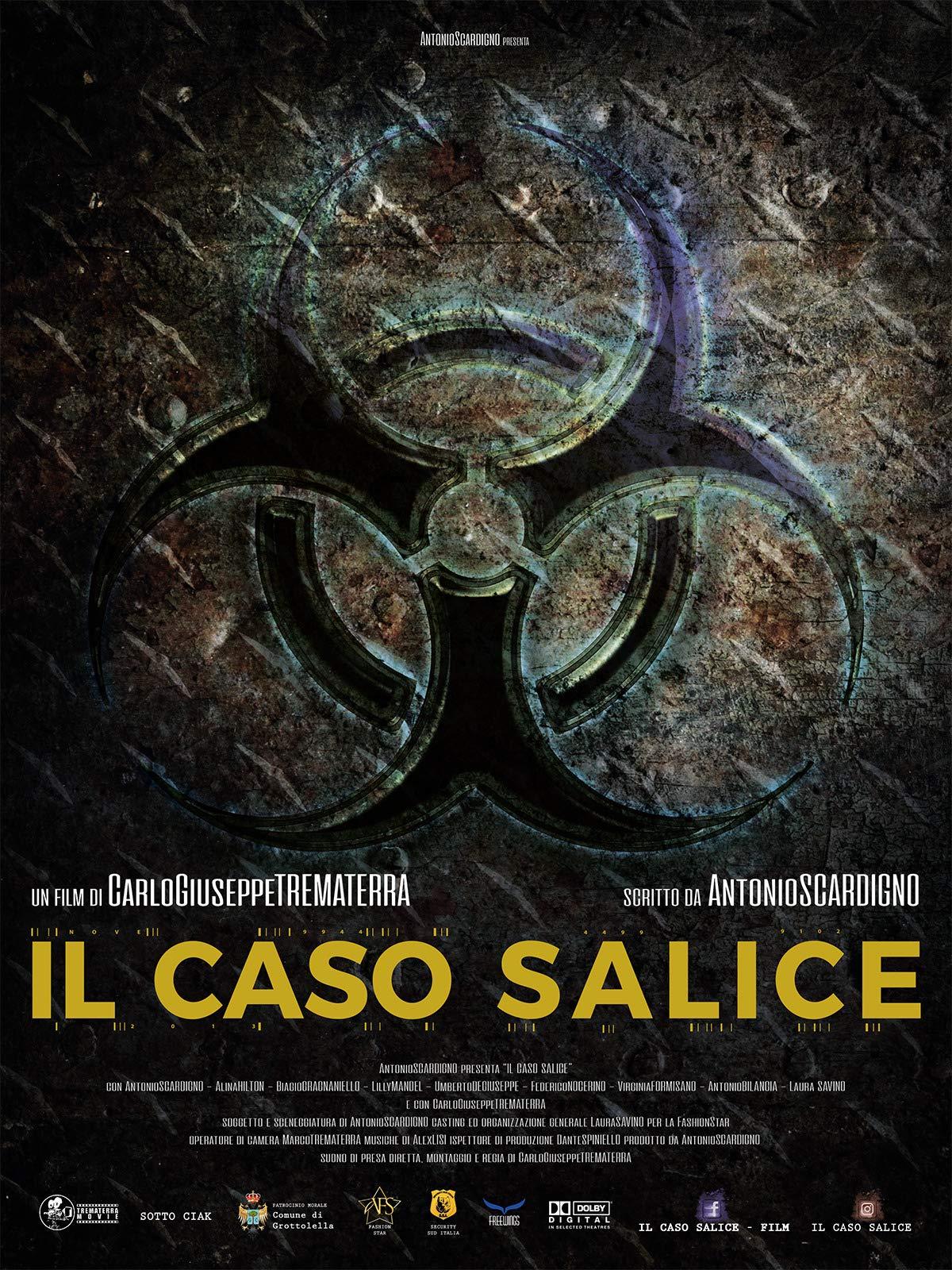 Salice's case - Il caso Salice