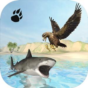 Sea Eagle Survival Simulator by Wild Foot Games