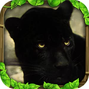Panther Simulator by Gluten Free Games