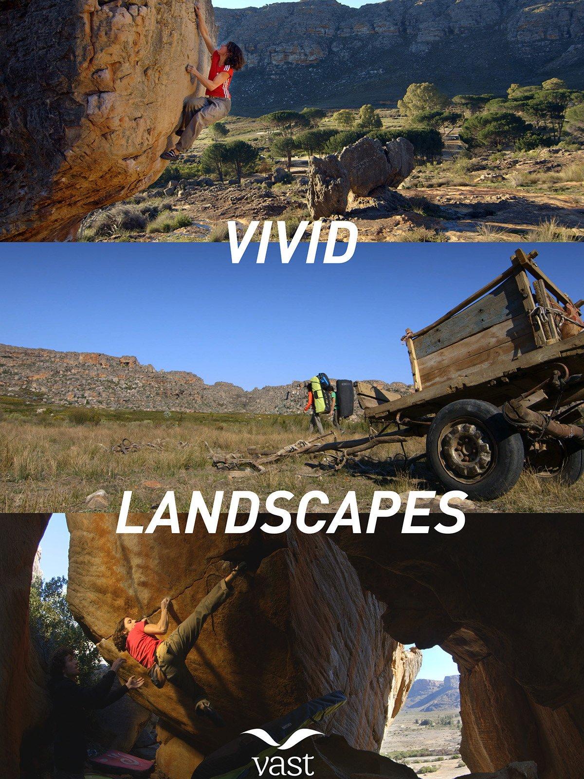 Vivid Landscapes