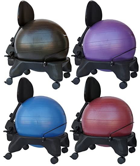 Isokinetics Inc. Brand Adjustable Back Exercise Ball Chair