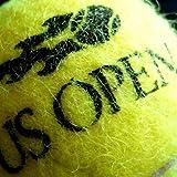 US Open Men's Tennis