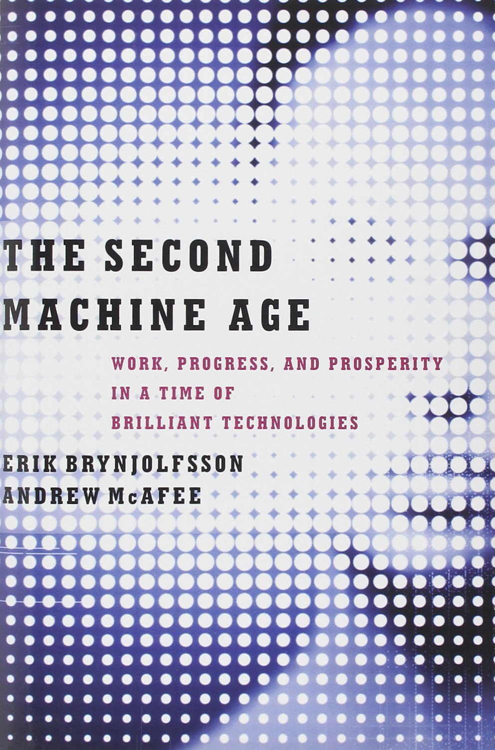 The Second Machine Age: Work, Progress, and Prosperity in a Time of Brilliant Technologies ISBN-13 9780393239355