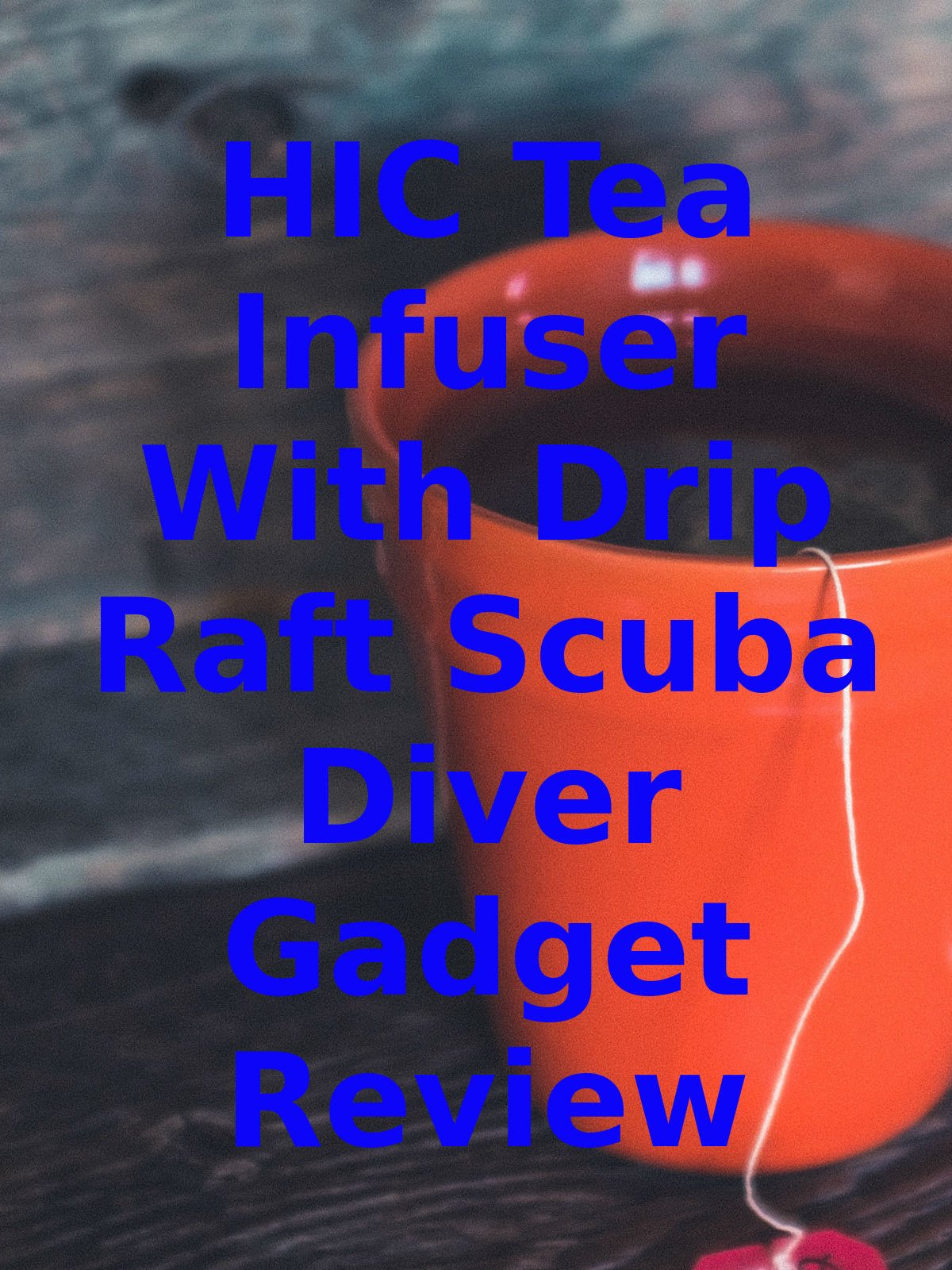 Review: HIC Tea Infuser With Drip Raft Scuba Diver Gadget Review on Amazon Prime Instant Video UK