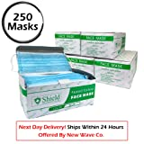 3-Ply Disposable Earloop Face Mask for Professional Medical, Dental, Salon Use (250 Masks / 5 Boxes, BLUE)