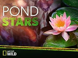 Pond Stars  Season 1