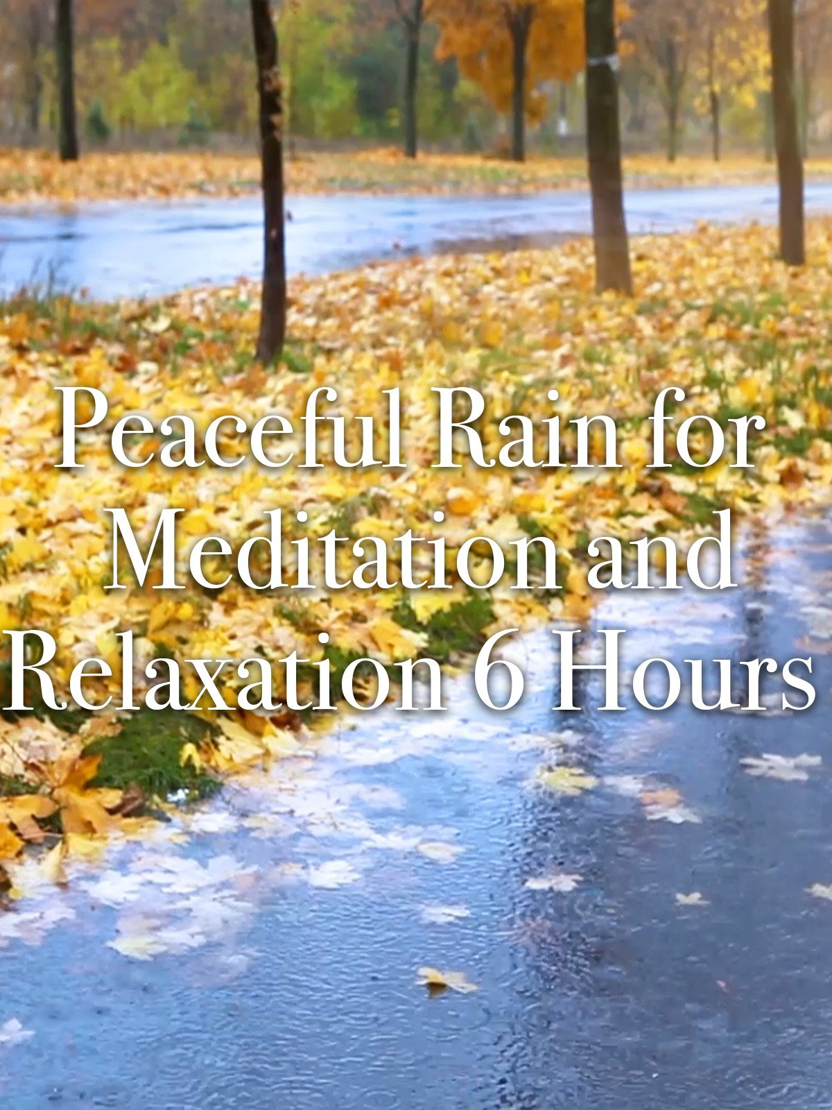 Peaceful Rain for Meditation and Relaxation 6 Hours