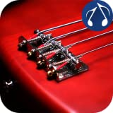 81U1CHL%2BYTL. SL160  Bass Guitar Master Free