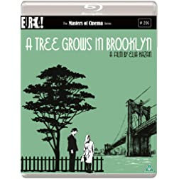 A Tree Grows In Brooklyn Masters Of Cinema [Blu-ray]