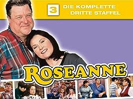 Roseanne - Staffel 3 (Folge 48 - 72)