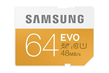 Samsung 64GB EVO SDXC UHS 1 - Class 10 Memory Card (MB-SP64D/AM)