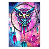 SuperDecor DIY 5D Diamond Painting Kits Partial Drill Diamond Embroidery Painting Art Owl Dream Catcher by Number Kits for Home Wall Decor Rose and Blue (Color: L969, Tamaño: 12x16 Inch)