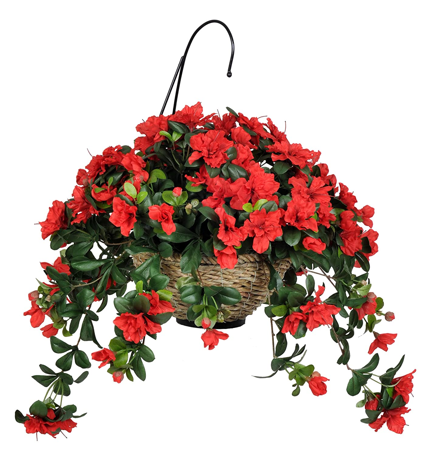 Flowers For Baskets For Hanging : Spring summer approaching shroud of the avatar forum