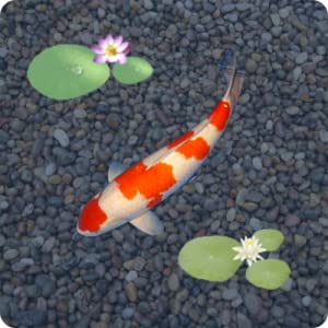 anipet koi live wallpaper free appstore for android
