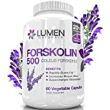 Forskolin 500mg 2X Strength 20% Standardized Fat Burner - Get the
