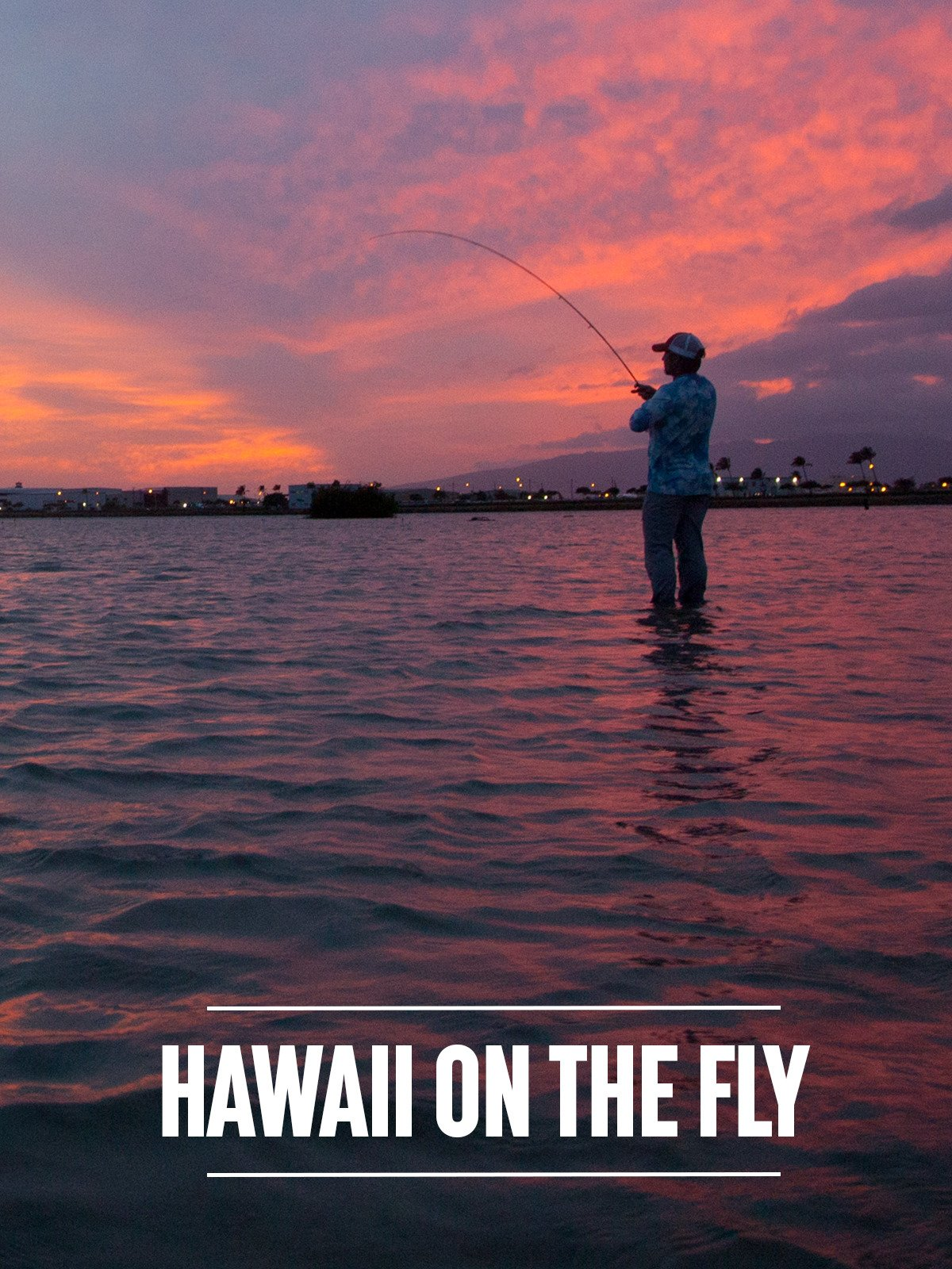 Hawaii on the Fly