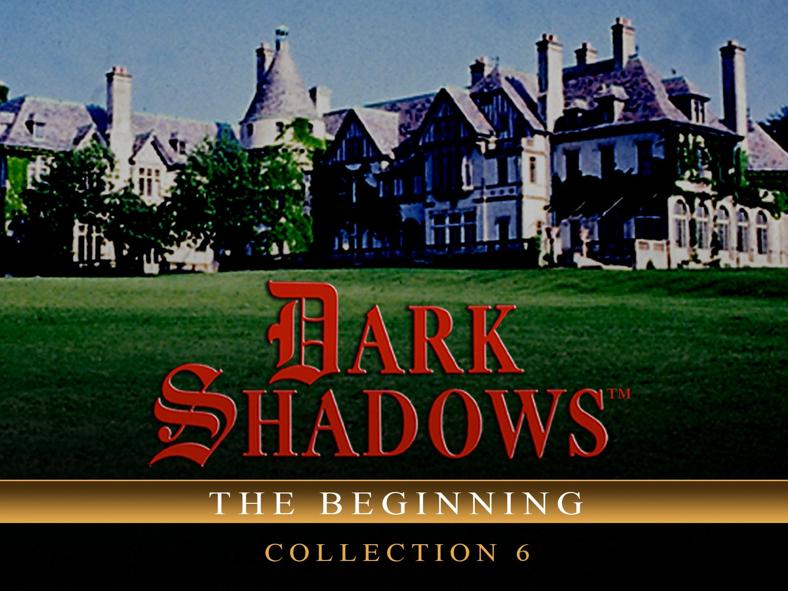 Dark Shadows: The Beginning