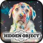 Hidden Object - Clutter Craze