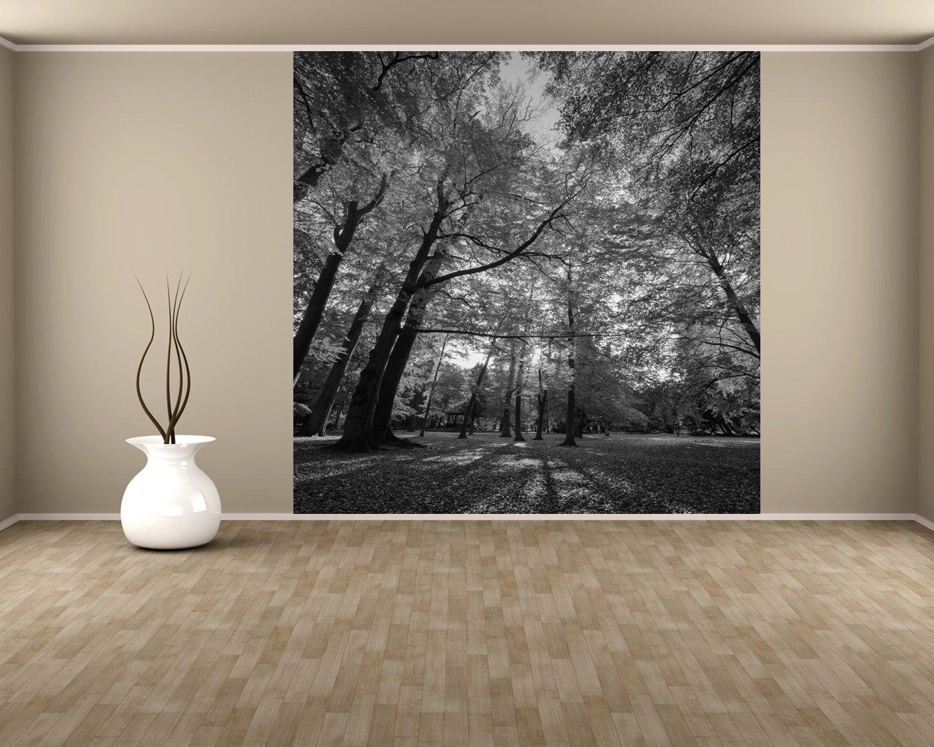 Bilderdepot24 selbstklebende Fototapete Blätterfall im Herbst  schwarz weiss 270x270 cm  direkt vom Hersteller   Kundenberichte und weitere Informationen