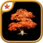 Fire Maple Games - Collection Aventur...
