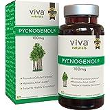 Viva Naturals Pycnogenol, 100mg, 60 Veggie Capsules - Proprietary French Pine Bark Extract (Tamaño: 60 Vegetarian Capsules)