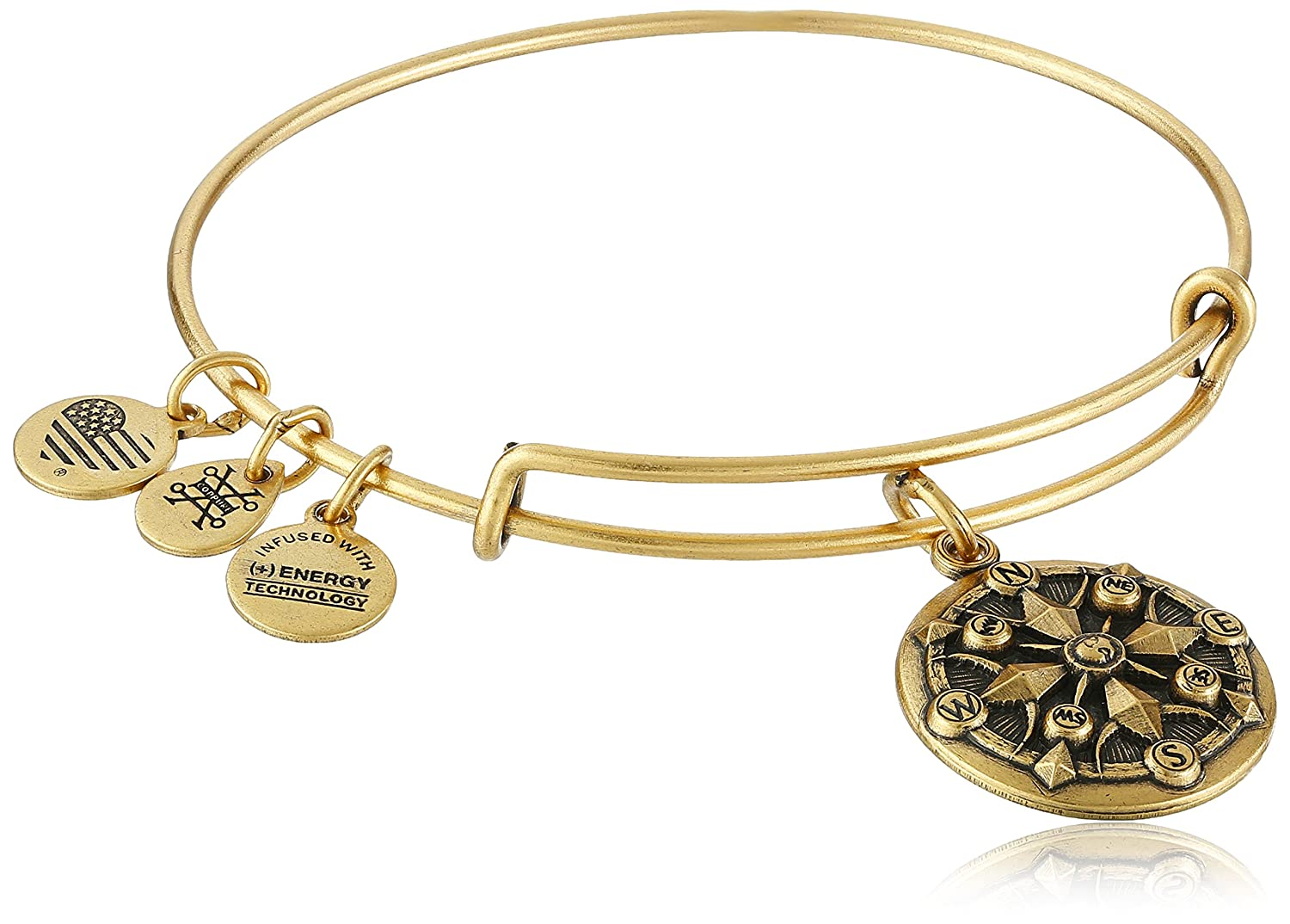 Alex and Ani Compass II EWB Rafaelian Bangle Bracelet