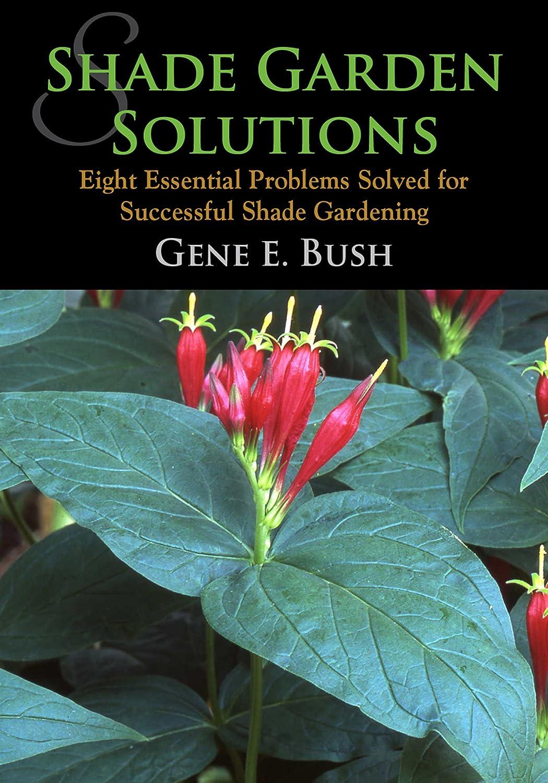 Shade Garden Solutions