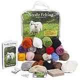Premium Needle Felting Kit for Beginners, 20 Colors Wool, Pure Wool Felting Pad, 6 Needles Various Sizes, Leather Finger Guards, Storage Case (Tamaño: Premium Kit)