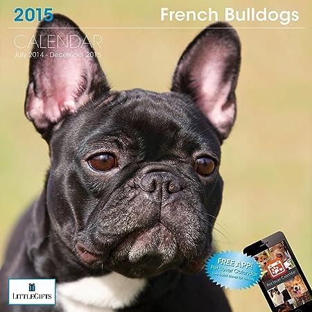 Little Gifts French Bulldog 2015 Calendar (8109)