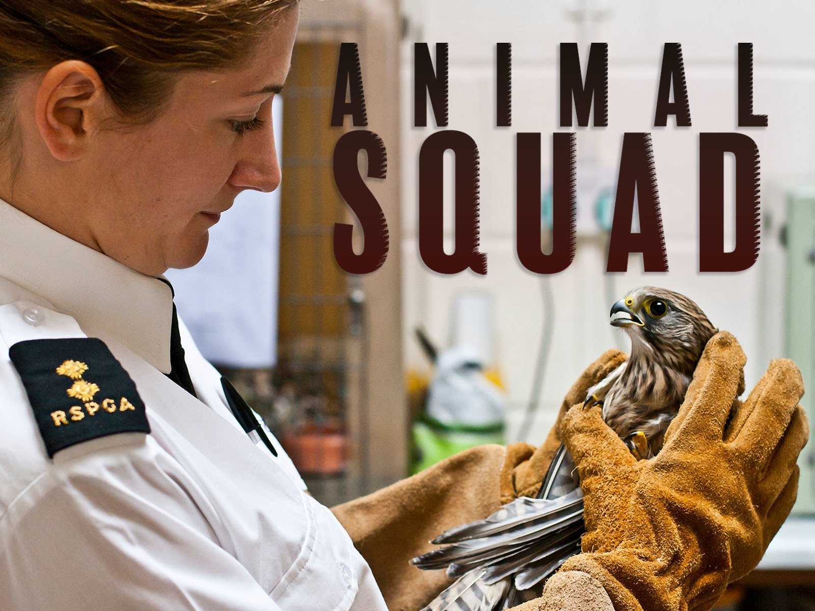 Animal Squad - Season 1