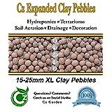 ORGANIC XL Leca Clay Pebbles Grow Media - Orchids Aquaponics Aquaculture Hydroponics - by Cz Garden Supply (2 LB - XL Clay Pebbles)