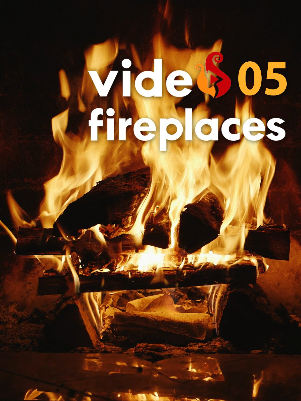 Video Fireplace 05