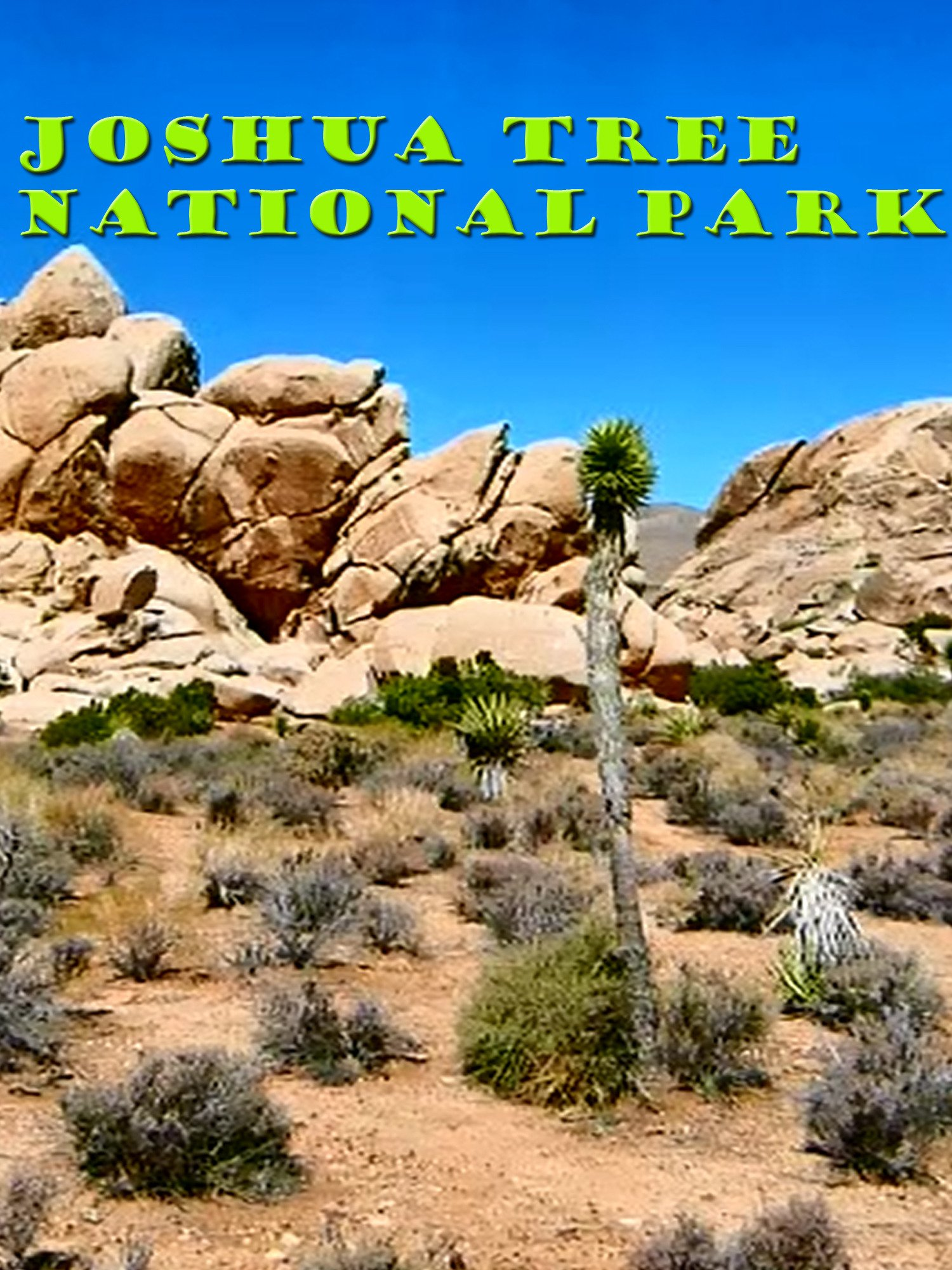 Clip: Joshua Tree National Park