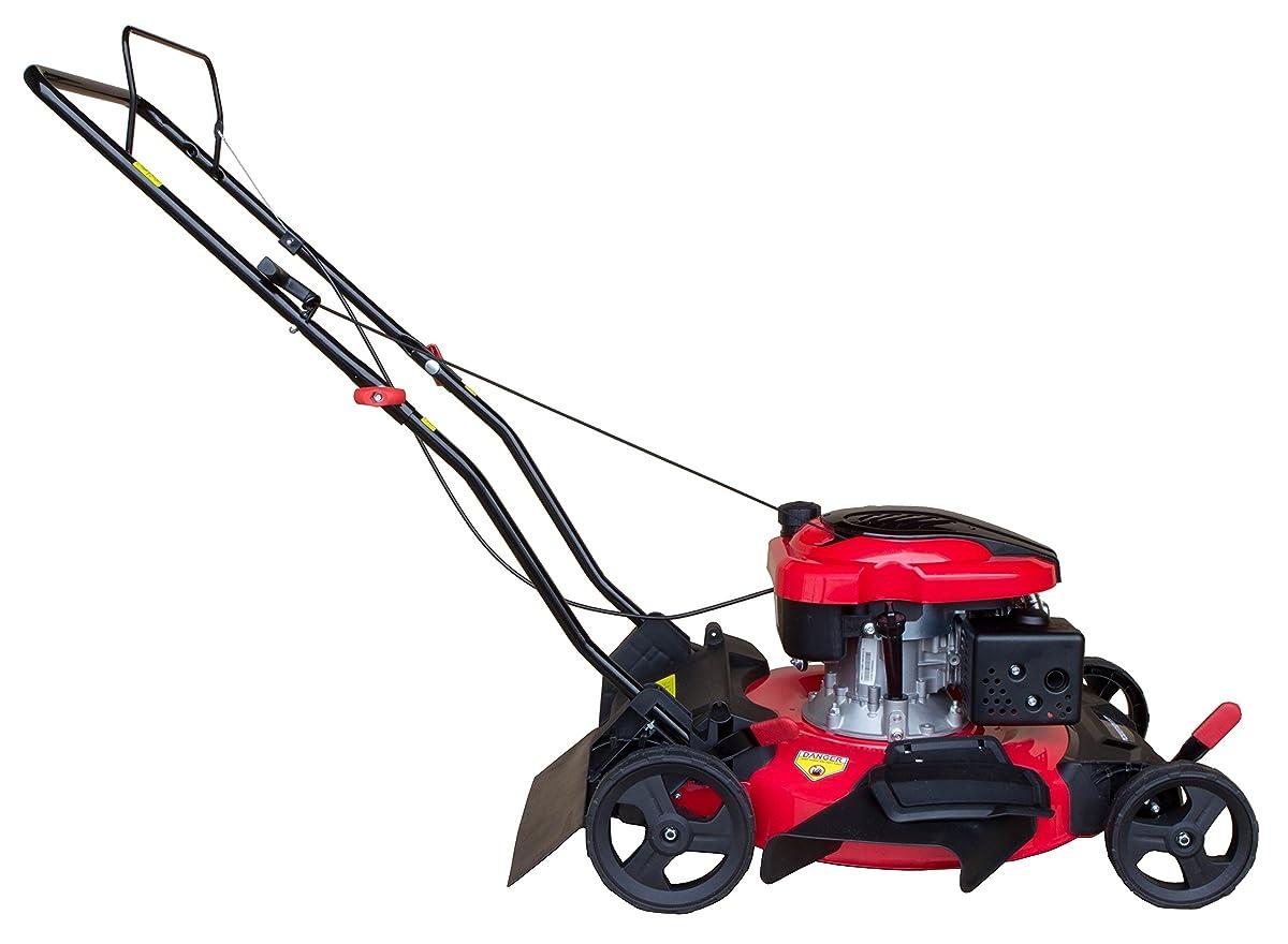 PowerSmart DB8621C Gas Push Mower