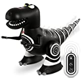 Sharper Image Remote Control Mini RC Robotosaur Dinosaur Toy for Kids, Miniature Futuristic Sci-Fi Robot T-Rex Moving Action Figure with Infrared Technology, Battery Operated – Black Body