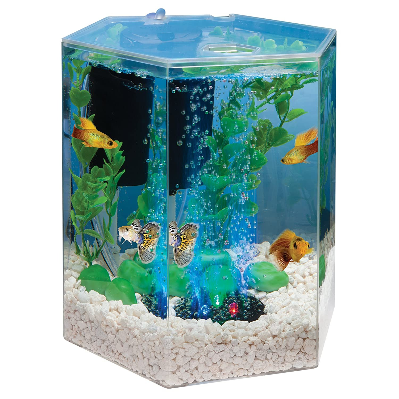 Hexagon Aquarium Kit With Led Bubbler 1 Gallon New Ebay