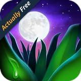 Relax Melodies Premium: Bruit blanc pour dormir, la méditation et le yoga...
