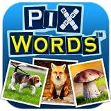 PixWordsTM