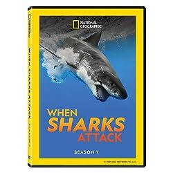 When Sharks Attack Season 7